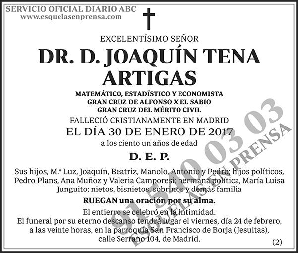 Joaquín Tena Artigas